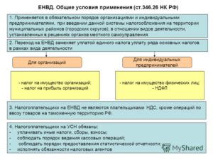 Преимущества ЕНВД для ИП