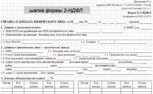 Справка по форме 2-НДФЛ для ИП и ООО