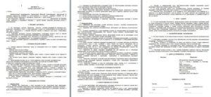 Договор между ООО и ИП. Образец договора услуг