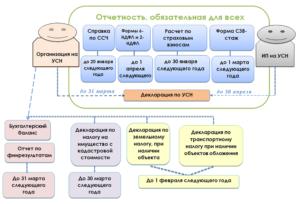 Отчетность ИП и ООО на УСН